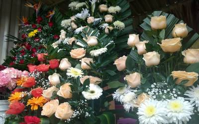 Listos Floristas Toluqueños Para Celebración A Las Madres